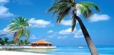 Hot Deals Beach Resorts